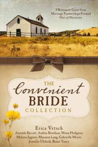 The Convenient Bride Collection--Lrg